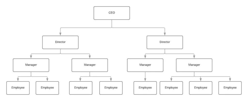 5 Best Organizational Structure Examples (For Any Business) - Tallyfy