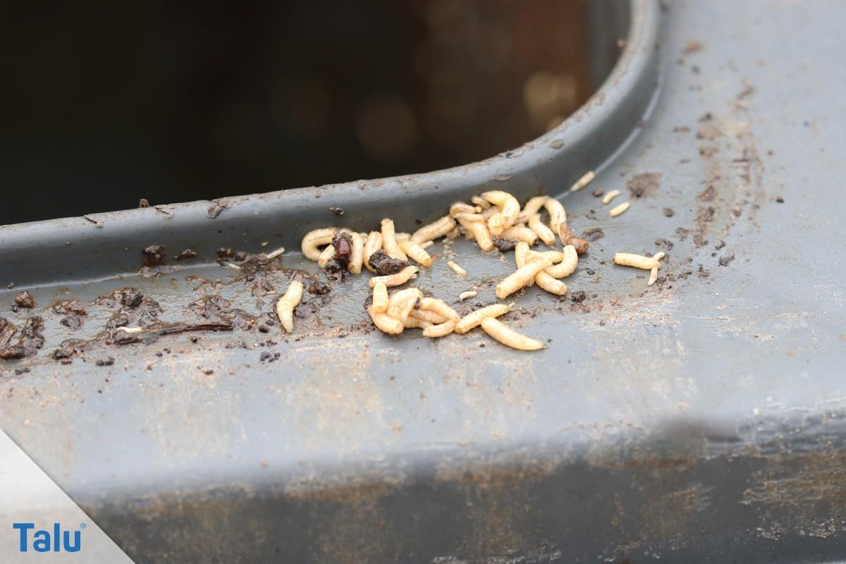 Salamander k che wikipedia kleindurchlauferhitzer k che for Spule spritzschutz