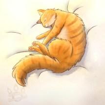 Bink sleep on bed