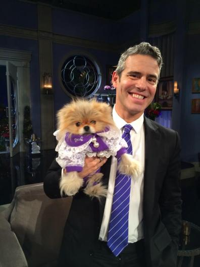 Andy Cohen with Giggy after the reunion