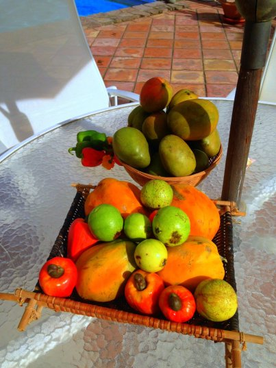 Fruits of the island