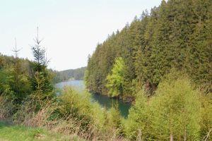 Tambacher-Talsperre-Mittelwasser-Tambach-Dietharz-Rennsteig-Thüringer Wald