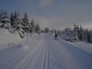 Ratgeber-Skilanglauf-Rennsteig-Thüringer Wald