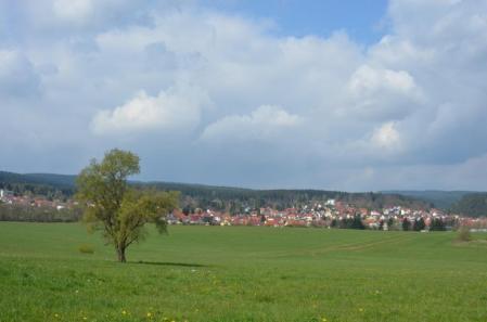 wandern-Tambach-dietharz-Fruehling-2
