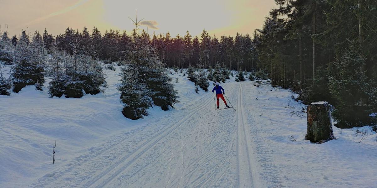 winter-rennsteig-thueringer-wald-ski-langlauf-tdaktiv-1