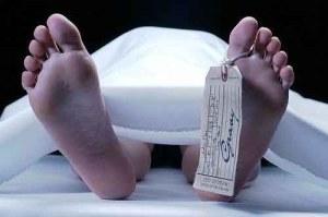 Muere en una cabaña tras mezclar Viagra, ron y energizante