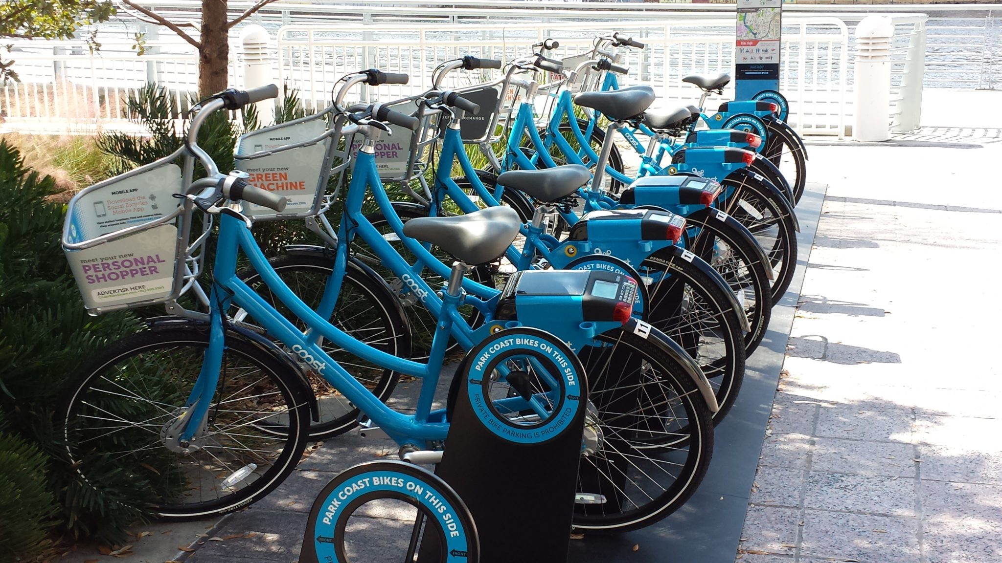 Bike Shop Tampa Fl Bike Month Tampa Downtown Partnership