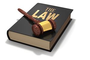 世界の法の日