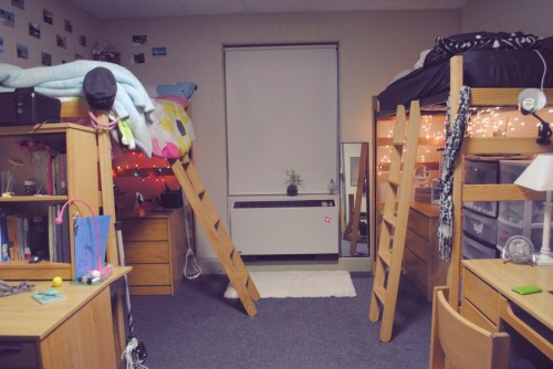 Medium Of Loft Dorm Room Ideas