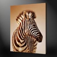 20 Best Zebra Wall Art Canvas | Wall Art Ideas