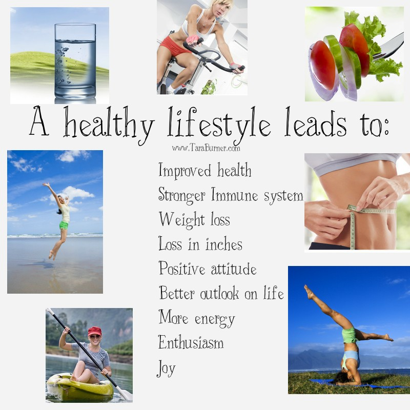 cover letter essay about healthy lifestyle essay about healthytv in