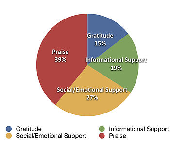 Social Support Behavior - Original Beauty results
