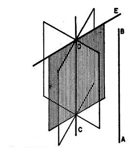 Figura 204