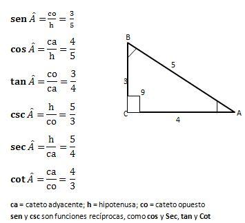 Representación de las razones trigonométricas de un ángulo agudo