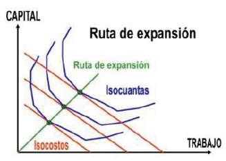 Ruta de expansión