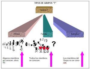 Tipos de grupos t