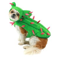 Cactus Dog Costume Set