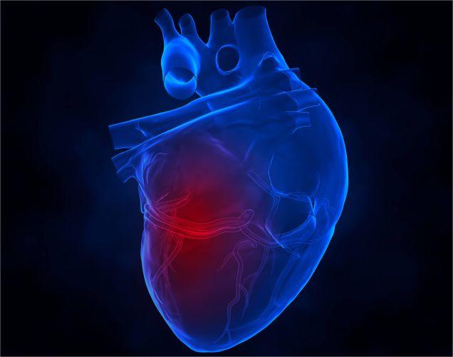 heart TargetHD News | Notícias do dia 12 08 2014
