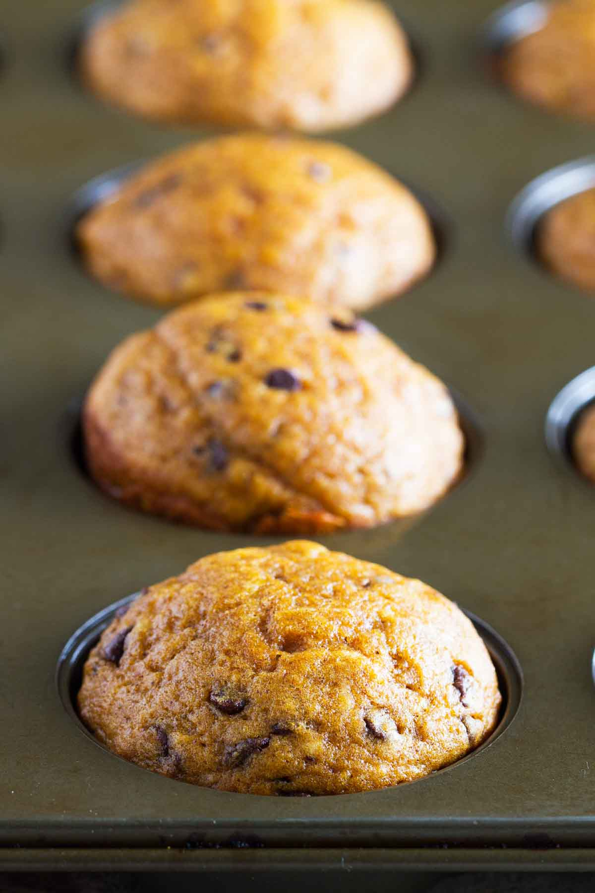 Barefoot Contessa Pumpkin Muffins Easy Pumpkin Muffins With Chocolate Chips