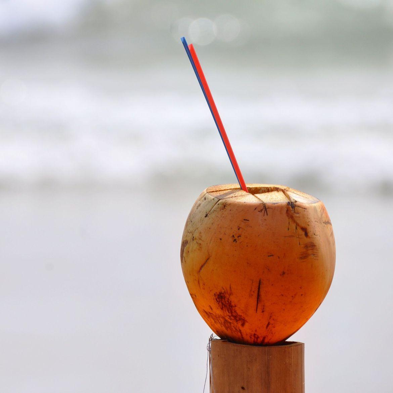 królewskie kokosy