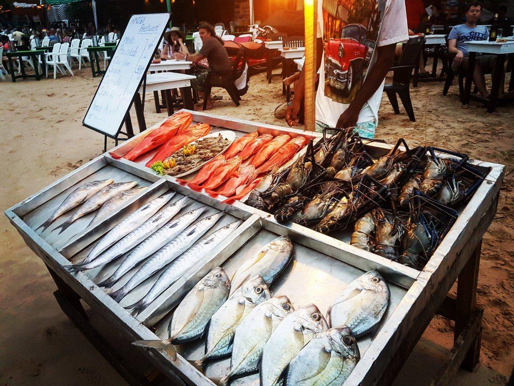Od lewego górnego rogu - red snappers, królewskie krewetki, jumbo prawns, brakuda, ryba maślana