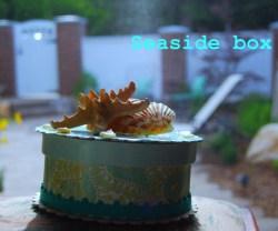 rp_seaside-box.jpg