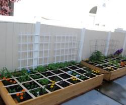 rp_square-foot-garden-001.jpg