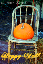 Pumpkin Patch 2009 and a great giveaway!