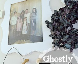 ghostly family gallery wall