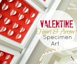 Valentine Heart and Arrow Specimen Art