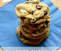 molasses chocolate chip cookies