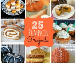 25 pumpkin projects