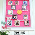 spring instagram photo display