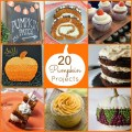 20 pumpkin projects