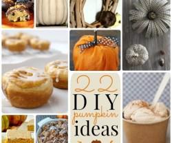 22.diy.pumpkin.ideas