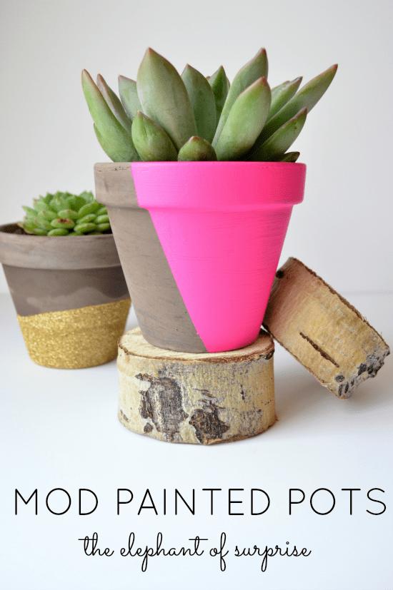 Valentine Pots Title