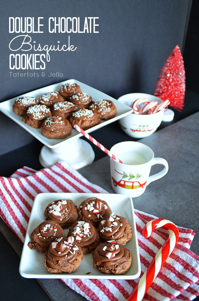 double chocolate bisquick cookie recipe at tatertots and jello