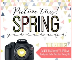 Win a DSLR Camera or Cedar Swing Set!