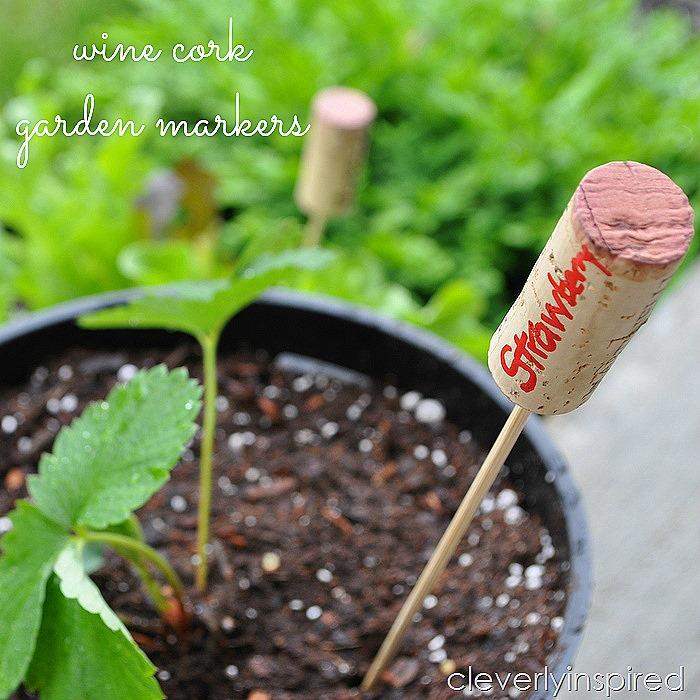 Strawberry Shortcake Sliders -- Tatertots and Jello