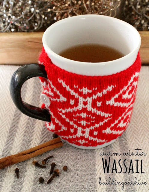 Warm Winter Wassail @ Building Our Hive