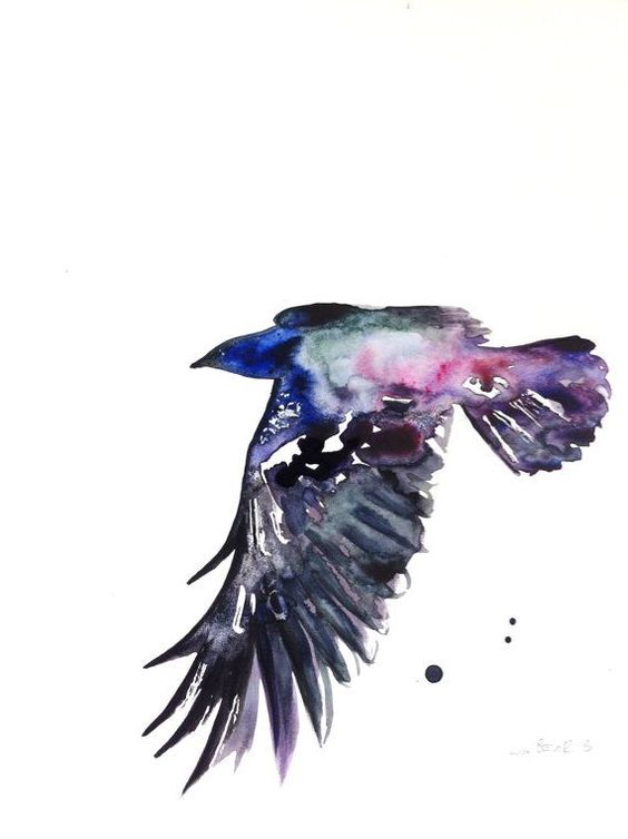 Pink Feathers Falling Wallpaper Flying Raven With Purple Watercolor Effect Tattoo Design