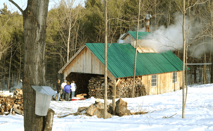 Homeowners Insurance New Hampshire Insurance For Maple Syrup Producers In Vt & Nh
