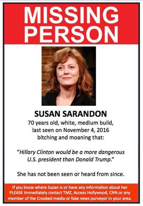 Missing Person - Susan Sarandon - Missing Persons Posters