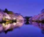 春は東京をドライブ!デートにおすすめなスポットをご紹介!