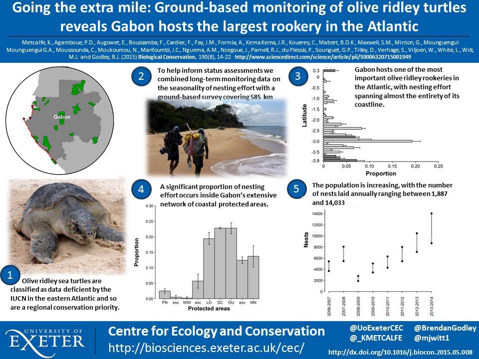 Tweetable science posters \u2013 teabreak wildlife news - scientific poster layouts