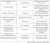 Cell City Analogy Worksheet Free Worksheets Library ...