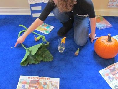 Exploring the life cycle of a pumpkin \u2013 Teach Preschool