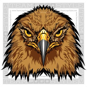 Hawk Graphic - Vector Mascot Image