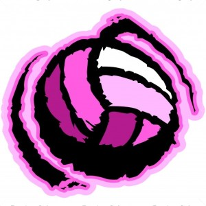 Pink Volleyball Image