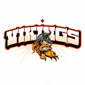 Vikings Team Logo